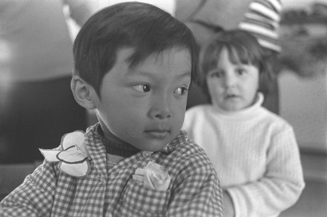 Vietnamese american culture essay