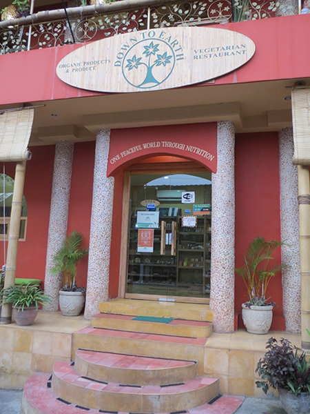 Organic food market Ubud